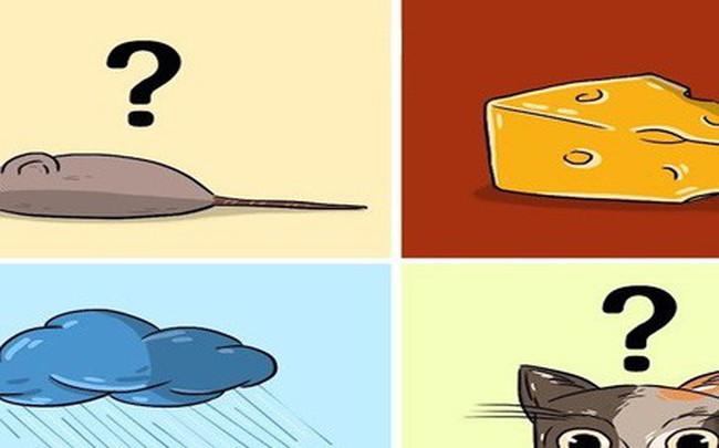 """6 câu đố siêu """"khó"""" này sẽ cho bạn biết mình có thông minh được hơn trẻ con lớp 5 hay không"""