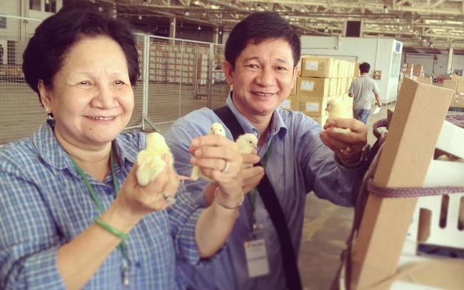 VinaCapital đầu tư 32,5 triệu USD vào trứng gà Ba Huân, định giá công ty gấp đôi Dabaco