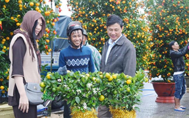 Nông dân miền Trung vui vụ hoa Tết