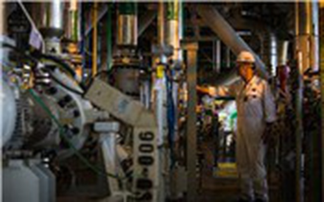 Vốn hóa một công ty Singapore tăng 1,5 tỷ USD trong 3 tuần
