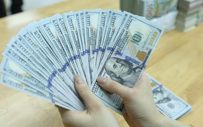 Cung ngoại tệ ngày càng lớn, Ngân hàng Nhà nước giảm giá mua vào USD