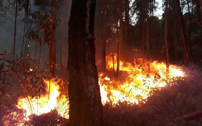 Ngày cúng ông Công, ông Táo, Quảng Ninh liên tiếp xảy ra 2 vụ cháy rừng lớn