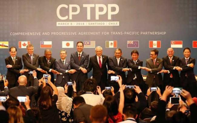 Đứng cuối bảng về trình độ phát triển kinh tế trong 11 nước, liệu Việt Nam có trở thành thị trường tiêu thụ của các quốc gia CPTPP?