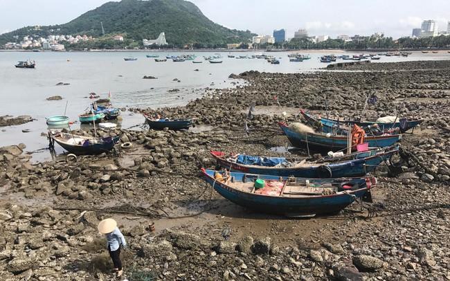 Tỉnh Bà Rịa - Vũng Tàu nói gì về chúa đảo Tuần Châu đề xuất làm siêu dự án Marina City?