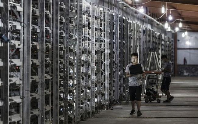Sẽ áp giá điện kinh doanh cho hoạt động đào Bitcoin ở Việt Nam - ảnh 1