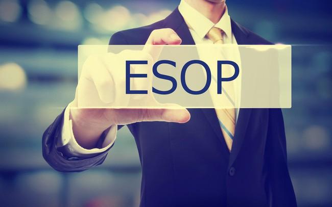 Không chỉ tăng lương, các ngân hàng còn đua phát hành cổ phiếu ESOP để giữ chân nhân tài