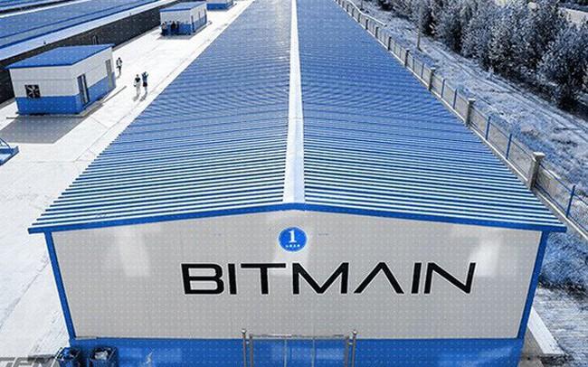 Bitmain - con cá voi lớn nhất thị trường bitcoin: sống sót sau thảm họa 2014, trở thành đối trọng thực sự của Google về AI
