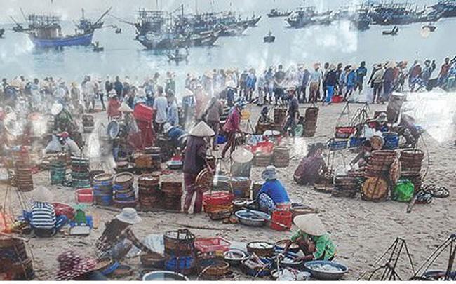 Trúng mực khơi, ngư dân kiếm cả trăm triệu đồng mỗi ngày