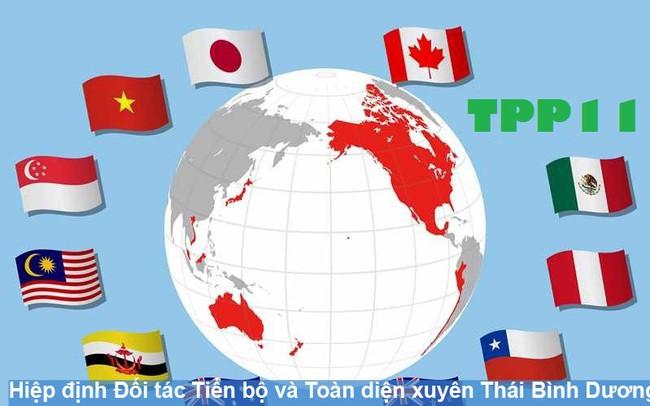 Việt Nam trông đợi gì ở Hiệp định CPTPP sắp được ký?