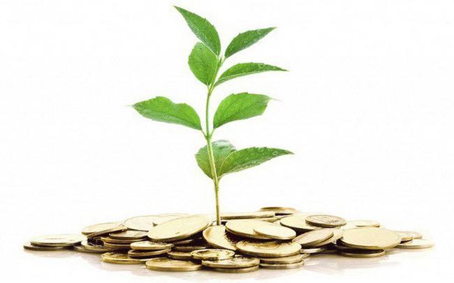 """Chứng khoán Việt Nam tăng trưởng """"nóng"""", cơ hội nào cho nhà đầu tư """"chậm chân""""?"""