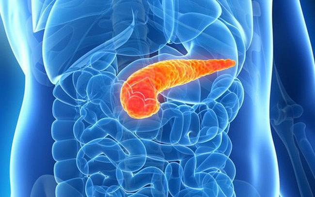 Ung thư tuyến tụy: Khó chuẩn đoán nhưng nguy cơ tử vong cao, đây là những dấu hiệu ban đầu mà bạn thường xem nhẹ