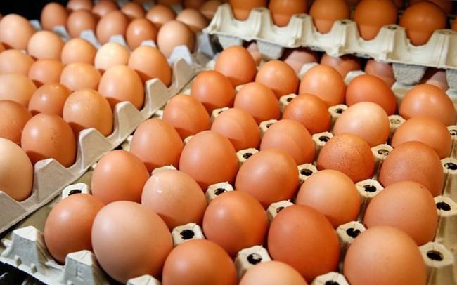 Miễn hạn ngạch thuế quan nhập khẩu muối và trứng gia cầm có xuất xứ từ ASEAN