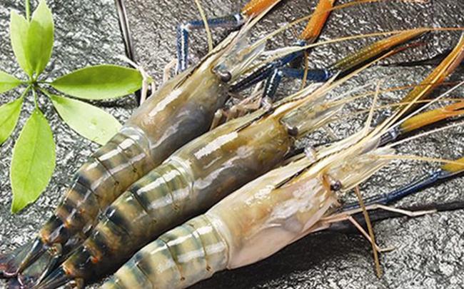 Về với chủ mới, doanh thu quý 1 của Thực phẩm Sao Ta (FMC) tăng 45% lên 34 triệu USD
