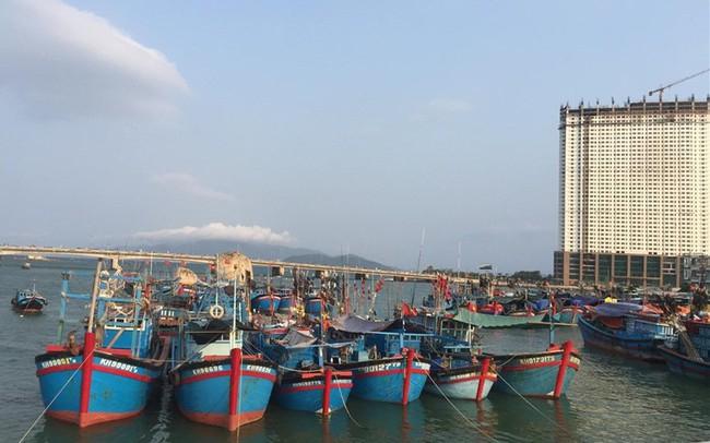 Hàng thủy sản Việt Nam xuất khẩu chứa kim loại nặng tăng đột biến