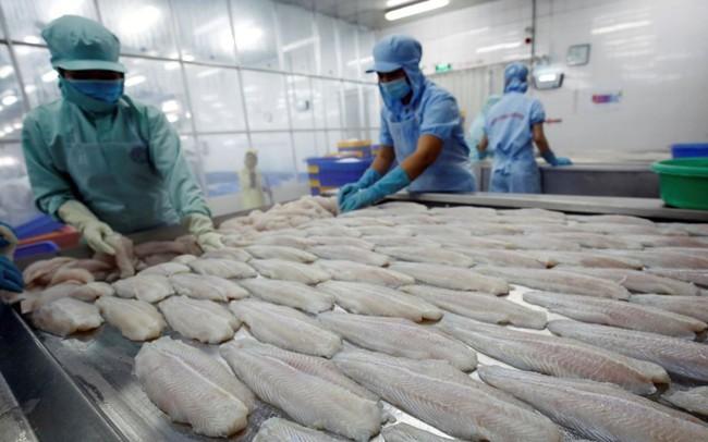 Muốn tránh thẻ đỏ thủy sản, Việt Nam phải quyết liệt hơn