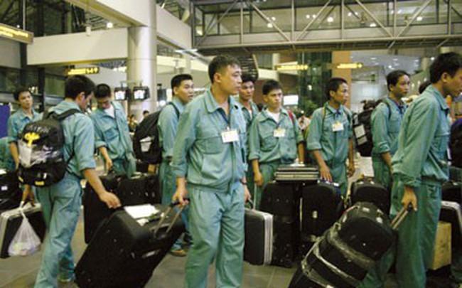 49 quận/huyện dừng tuyển lao động sang Hàn Quốc