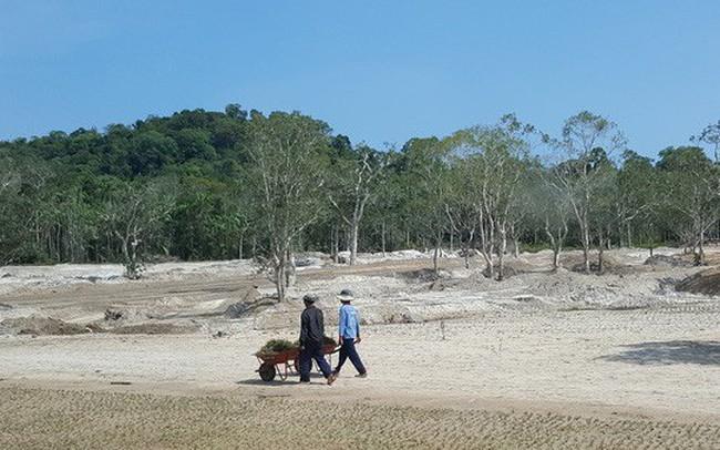 Chủ tịch tỉnh Kiên Giang yêu cầu Phú Quốc tạm ngưng giao dịch đất