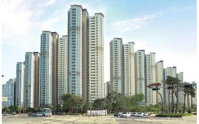 Tập đoàn Xây dựng Woomi (Hàn Quốc) chính thức trở thành cổ đông lớn chiến lược của BCG