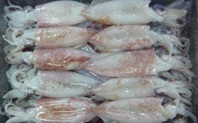 Xuất khẩu mực, bạch tuộc sang Nga tăng đột biến
