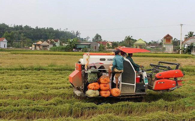 Thêm 8 tỉnh được điều chỉnh quy hoạch sử dụng đất