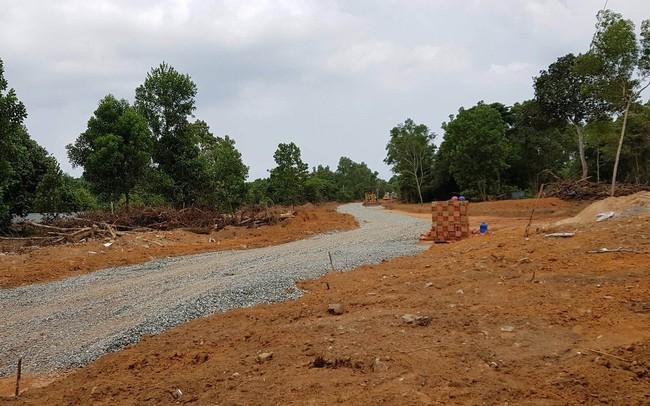 Đồng Nai rà soát nạn phân lô bán nền đất nông nghiệp