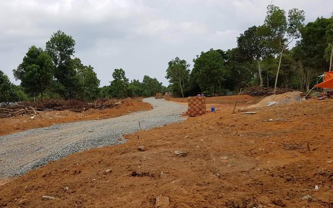 TP.HCM: Công bố 52 thủ tục hành chính trong lĩnh vực đất đai