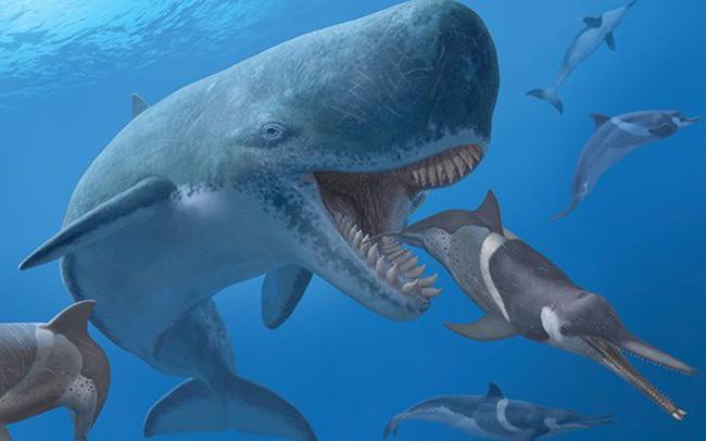 """Cổ đông chiến lược và câu chuyện """"nuôi cá mập trong nhà"""""""