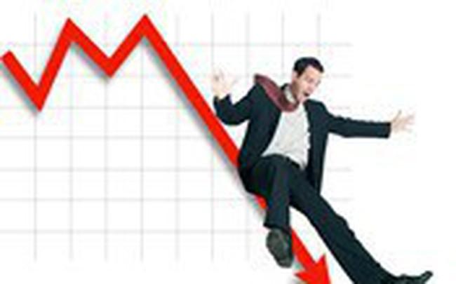 Cổ phiếu vốn hóa lớn đã giảm hơn 20% từ đỉnh lịch sử 1.200 điểm