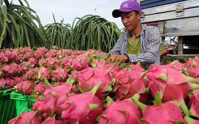 """Vẫn đang """"gỡ khó"""" cho xuất khẩu nông sản sang Trung Quốc"""