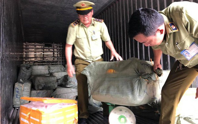 Phát hiện container chở gần 7 tần thịt động vật thối vào TP.HCM