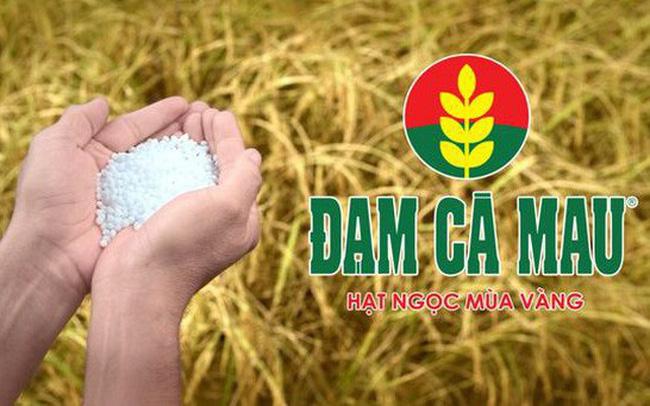 Đạm Cà Mau (DCM): Lợi nhuận quý 3 giảm 94%, cổ phiếu lao dốc mạnh
