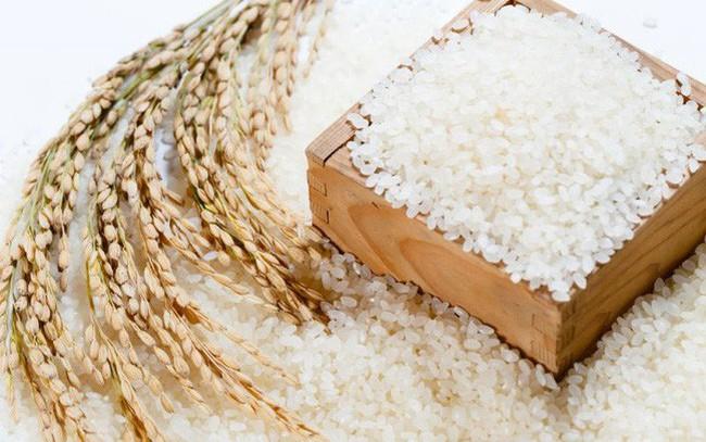 Xuất khẩu gạo tăng mạnh