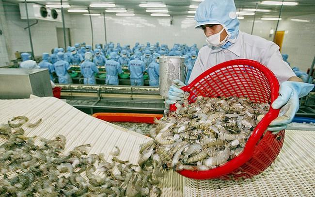 Kết quả hình ảnh cho xuất khẩu tôm