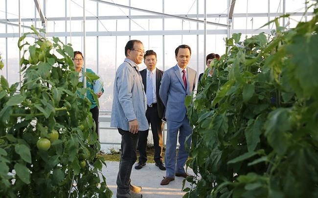 Tập đoàn FLC đề xuất nghiên cứu xây dựng khu nông nghiệp công nghệ cao tại Đầm Hà