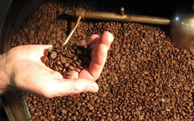 Giá cà phê trong nước tiếp tục giảm, chạm mức thấp 25 tháng