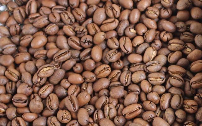 Giá cà phê lao dốc trở lại