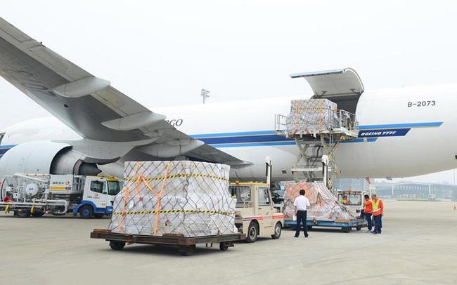 Saigon Cargo Service (SCS) chi 150 tỷ đồng trả cổ tức bằng tiền tỷ lệ 30%