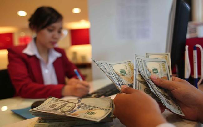 Chuyên gia: Tỷ giá biến động mạnh, NHNN cần siết chặt hơn nữa việc cho vay ngoại tệ