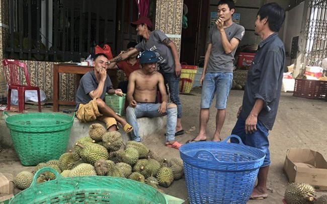 Lâm Đồng thông tin chính thức về 'cơn sốt' hạt sầu riêng - ảnh 1