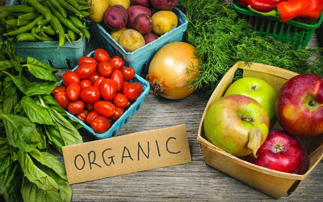 Kết quả hình ảnh cho nông nghiệp hữu cơ