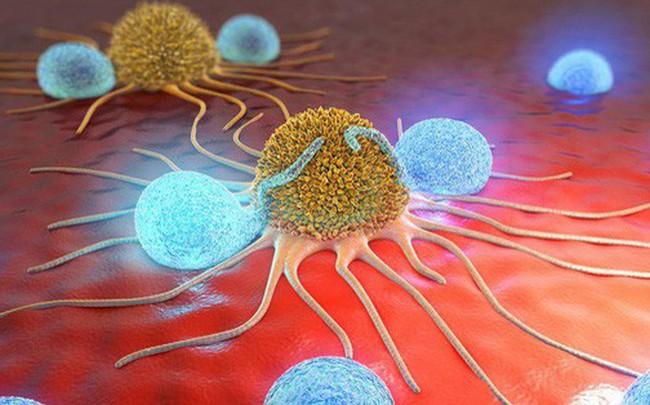 """10 giải pháp """"phong tỏa"""" tế bào ung thư: Nếu muốn phòng bệnh hiệu quả, hãy tham khảo ngay"""