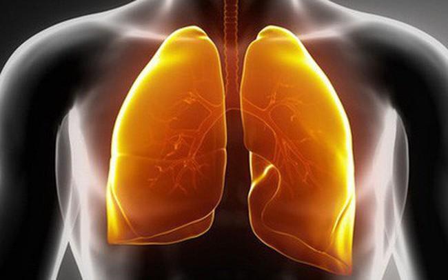 """Hút thuốc khiến phổi bị """"nhuộm"""" đen và sinh bệnh: Cách thanh lọc phổi bạn nên áp dụng sớm"""
