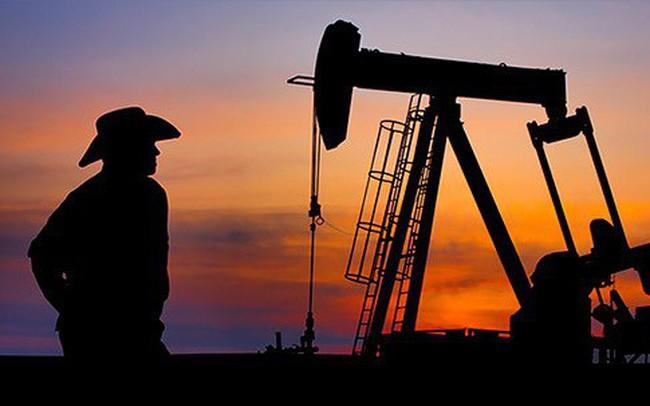 Giá dầu bất ngờ lao dốc, người ôm cổ phiếu dầu khí ngồi trên đống lửa