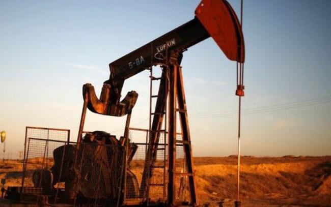 Giá dầu thô lao dốc