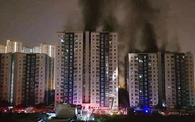 Vụ cháy Carina khiến 13 người tử vong: Bắt giam Trưởng ban quản lý chung cư