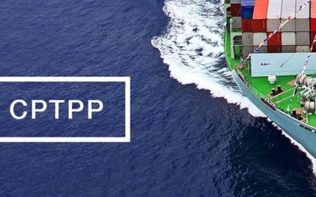 Chính phủ sẽ trình thông qua Hiệp định CPTPP tại kỳ họp Quốc hội tháng 10