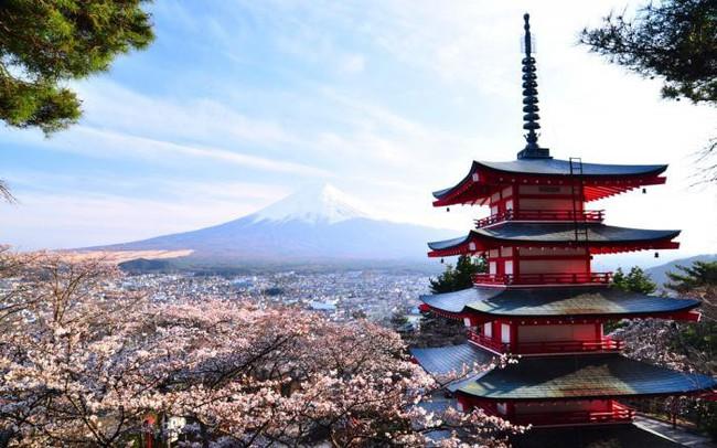 """8 năm """"kẹp hàng"""", công ty chứng khoán Nhật Bản bất ngờ đạt lãi khủng nhờ biến động bất thường của cổ phiếu SRA"""