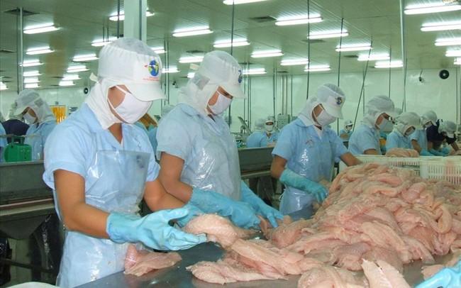Lần đầu tiên xuất khẩu cá tra cán mốc 2 tỉ USD