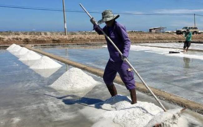 Hạn chế nhập khẩu muối, tạo điều kiện tiêu thụ cho diêm dân