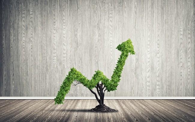 Chứng khoán Bản Việt phát hành thành công 300 tỷ đồng trái phiếu không chuyển đổi